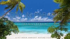 A Day In Paradise (No Music) 4.5 Hour Pure Nature Relaxation Film – Fiji HD [Remastered 4K]