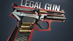 TOP 10 Legal Self Defense Guns You Can Buy Online