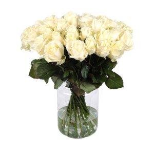 Witte Rozen | Hollandse rozen | Uwbloemenman.nl