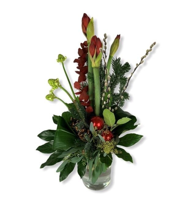 Amaryllis rood | Haal de kerst sfeer in huis | Uwbloemenman.nl