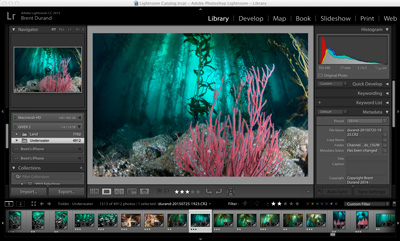 Color Filters vs. Post-Processing Underwater Photography Guide