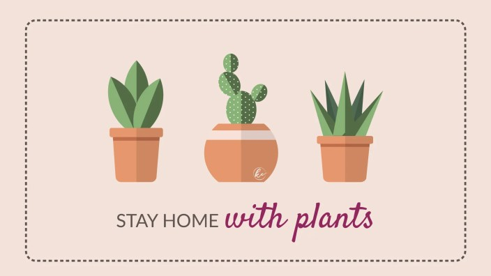 stay-home-with-plants