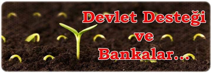 Devlet Destekli Sertifikalı Tohum Alma Kredisi ve Kredi Veren Bankalar 2018