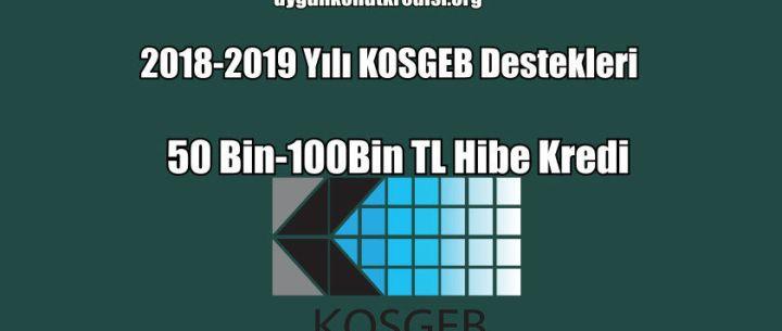 2018-2019 Yılı KOSGEB Destekleri (50 Bin-100Bin TL Hibe Kredi)