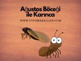 Ağustos Böceği ile Karınca Masalı