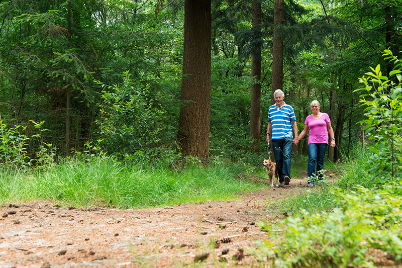 United Zion - Looking Down the Trail – Planning Ahead for Retirement