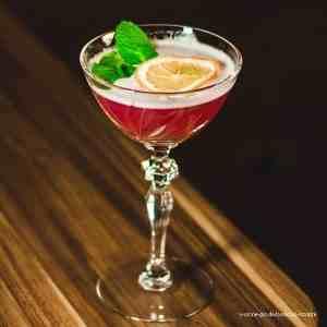 Gin Cocktail Rezepte