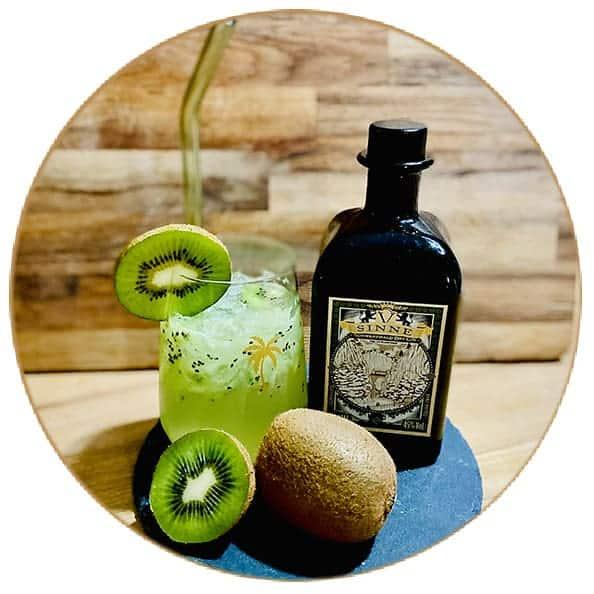 V-SINNE Gin Tonic Kiwi King
