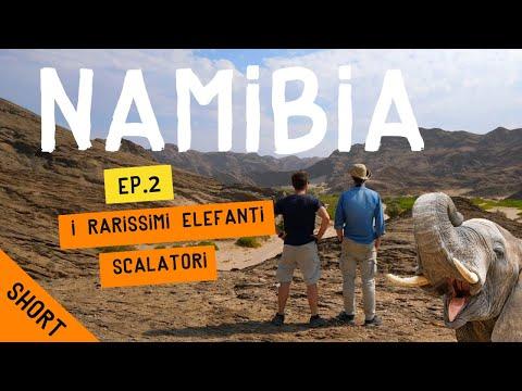 I rarissimi elefanti della Namibia – Ep. 2