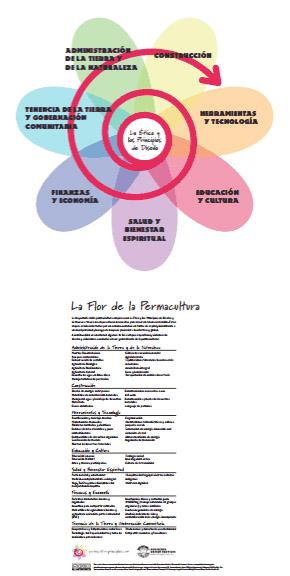 permacultura_flor