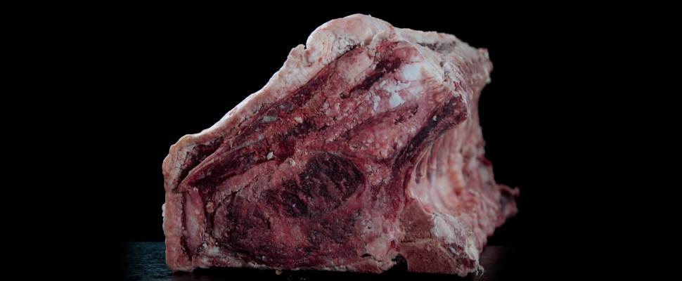 dry aged beef, vita maturata, vacamuuu