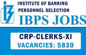 ibps clerk notification recruitment 2021