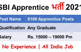 sbi apprentice recruitment 6100 posts
