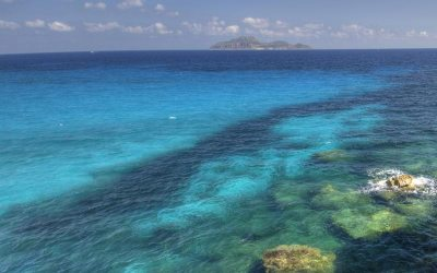 bed and breakfast a Favignana