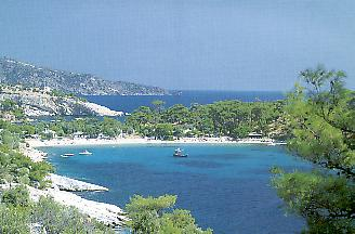 twin-beaches.jpg (17863 bytes)