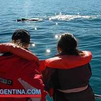whales-patagonia-04