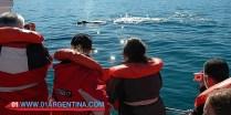 whales-patagonia-04