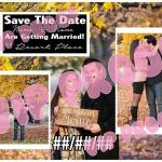 Collage D Save the Date