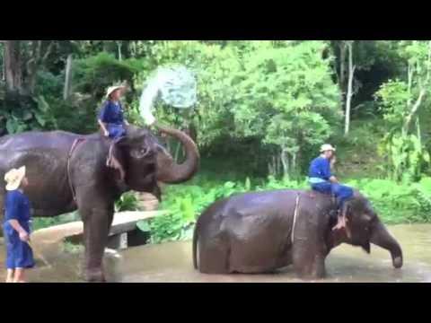 VIP Vacations, testimonial, Four Seasons, Four Seasons Gold Triangle, Thailand