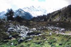 Tdeva13 (38)