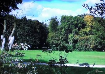 Britzer Garten 2014 (4)