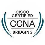 cisco certified ccna bridging