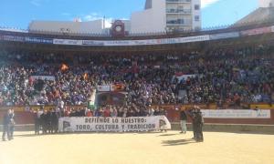 Castellón, 15 de febrero de 2015.