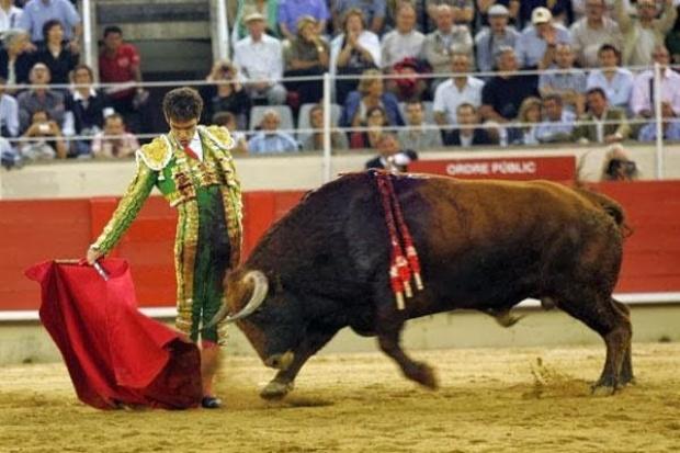 José Tomás y Jordi Pujol, los culpables de mi afición a los toros
