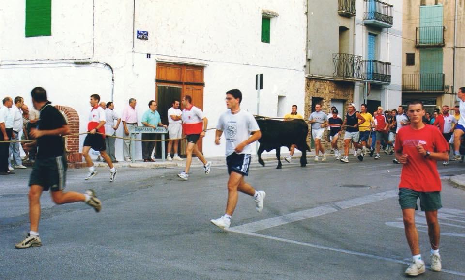 La Sénia recupera el bou capllaçat després de 18 anys