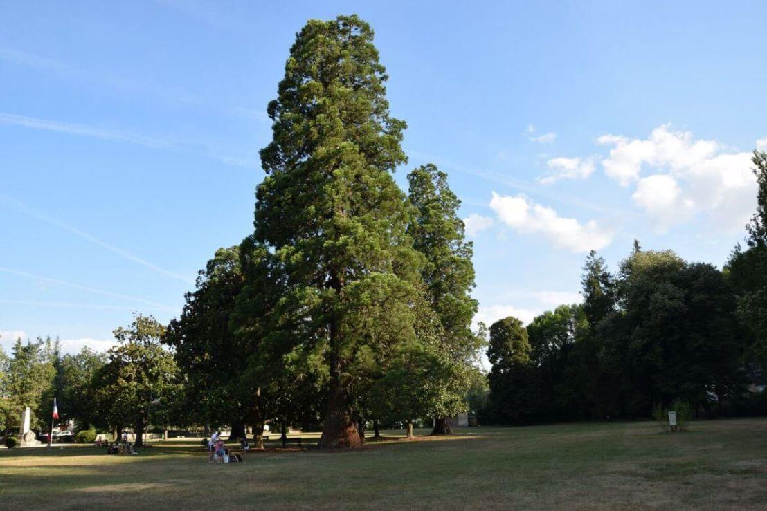 Park in Branthome in de Dordogne
