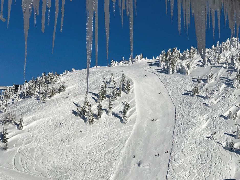 Pegels en pistes in Flachau
