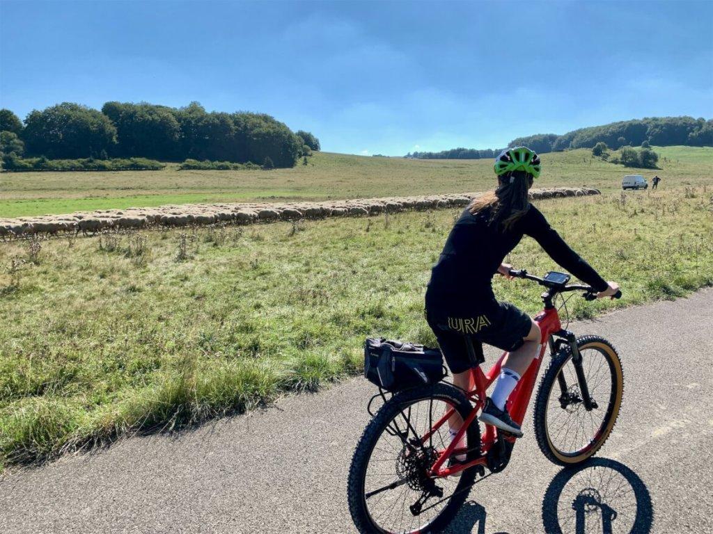 Fietsen - Munsingen - E-Bike - Gruorn - Biosfeerreservaat