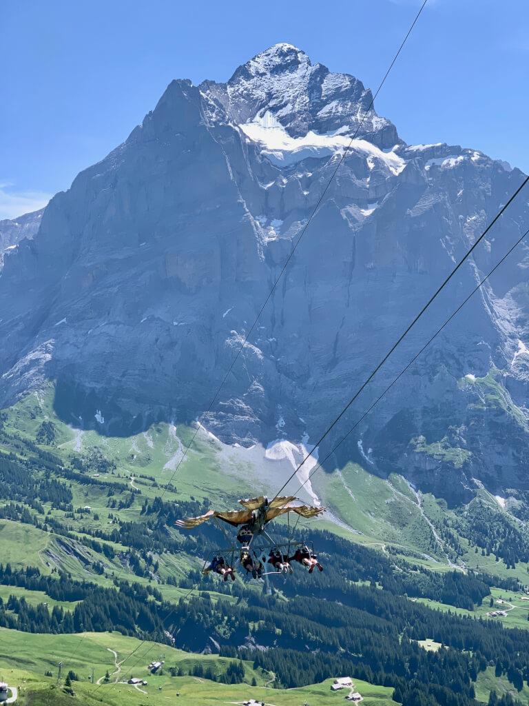 First Grindelwald - Glider - Adventure park - Zwitserland - Tip
