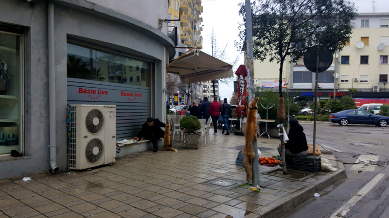 Vacanze in Albania lowcost Durazzo, vendita pelli di volpe
