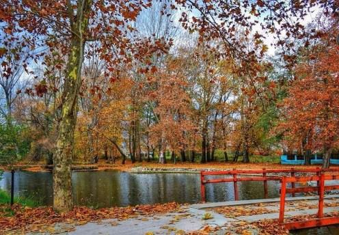 Autunno in Albania, foliage, Parco nazionale di Drilon