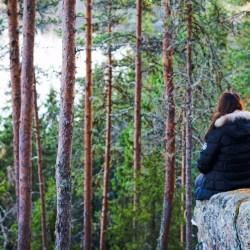 Kuopion luontopolut