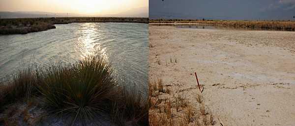 Before and after photo of Laguna Intermedia at Cuatro Cienegas Basin