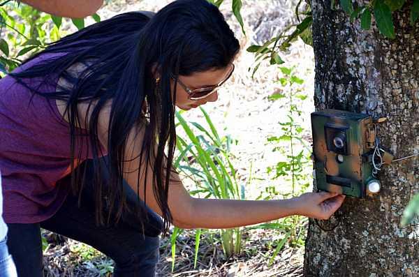 Checking a camera trap