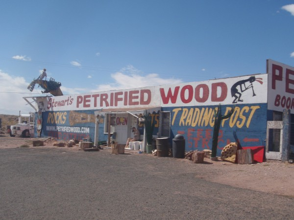 petrified-wood-arizona