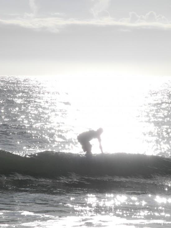 surfingsrilanka