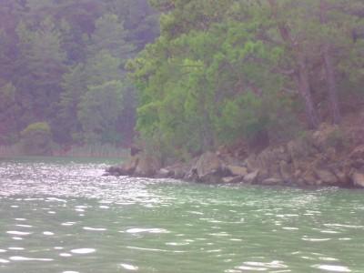 Turkey, Koycegiz Lake