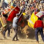 Camel wrestling festival, Turkey, Selcuk, Ephesus