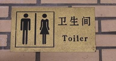 Traveler diarrhea
