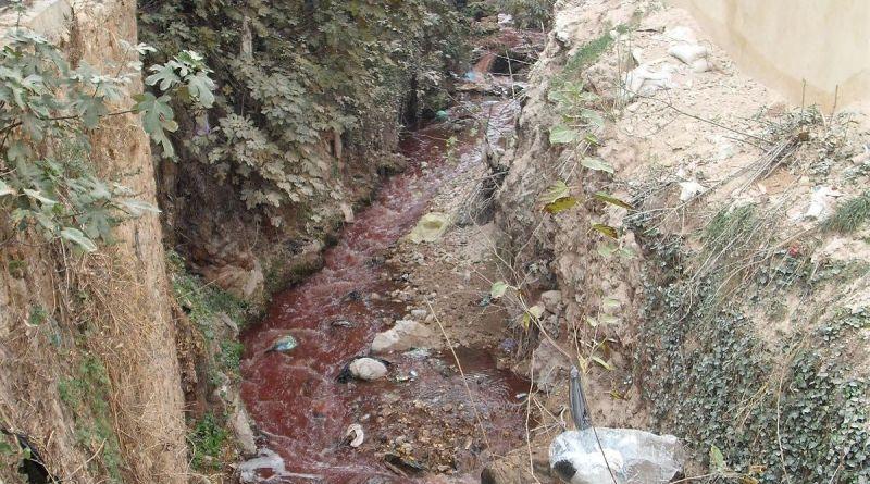 bloody river of Eid Sacrifice