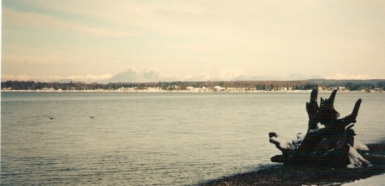Birch Bay in Winter – Have You Been Here?