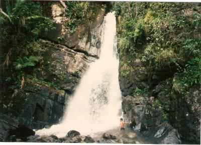 Rainforest waterfall in Puerto Rico