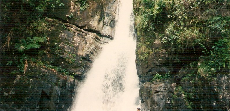El Junque Waterfall in Puerto Rico – Have You Been Here?
