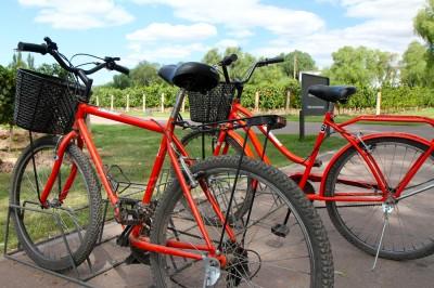biking in Mendoza