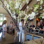 Linda Kissam explores Oregon's Great Grapes