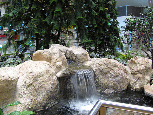 Garden inside DXB Dubai